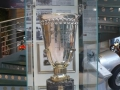 Museo Nicolis -38