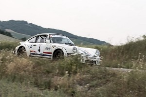 Rally 4 Regioni 2015 -1