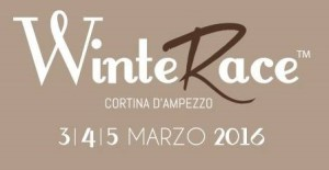Logo WinterRace 2016