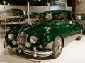 Mostra Jaguar a TO -9