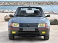 205 Turbo 16-2
