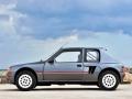 205 Turbo 16-5
