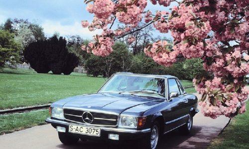 Mercedes-Benz SL, 50 anni di storia per la serie '107'.